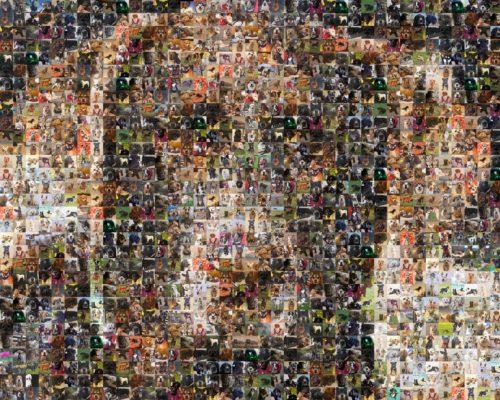 Ruby.mosaic.birthday.2021